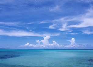 サンゴ礁の海とすじ雲の写真素材 [FYI03884263]