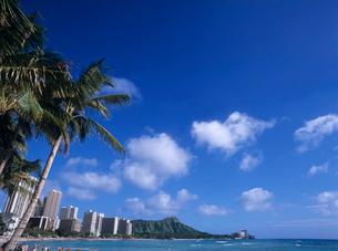 ワイキキビーチ ハワイの写真素材 [FYI03884646]
