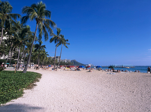 ワイキキビーチ ハワイの写真素材 [FYI03884652]