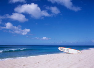 ビーチのサーフボード オアフ島の写真素材 [FYI03884708]