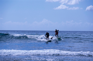 パドルサーフィンの写真素材 [FYI03884733]