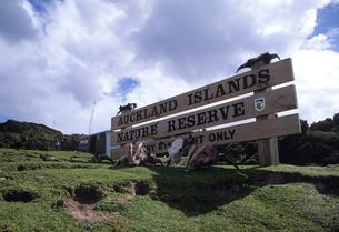 オークランド島の管理事務所の看板の写真素材 [FYI03884947]