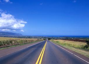 ノースショアに続く道路 オアフ島の写真素材 [FYI03885095]