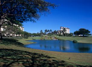 コオリナゴルフクラブ オアフ島の写真素材 [FYI03885108]