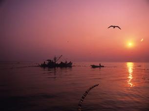 早朝の定置網漁 氷見市 富山県の写真素材 [FYI03885151]