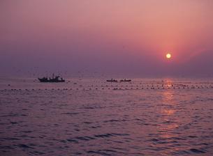早朝の定置網漁 氷見市 富山県の写真素材 [FYI03885152]
