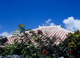 ブーゲンビリアと赤瓦屋根とシーサー 竹富島の写真素材 [FYI03885235]