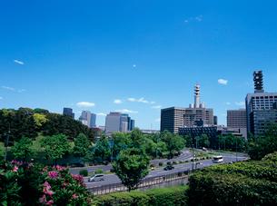 大手町と皇居 東京都の写真素材 [FYI03886526]