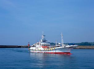 入港するカツオ漁船の写真素材 [FYI03886532]