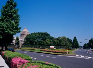 国会議事堂 東京都の写真素材 [FYI03886550]