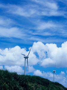 風力発電所 宮古島の写真素材 [FYI03886605]