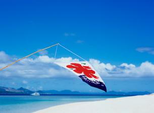 海辺の氷の旗の写真素材 [FYI03886665]