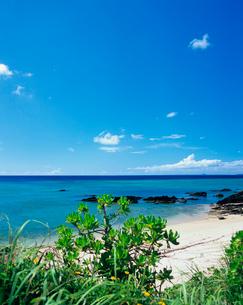 恩納村のビーチの写真素材 [FYI03886697]