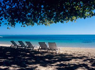 海辺の木陰のデッキチェアの写真素材 [FYI03886837]