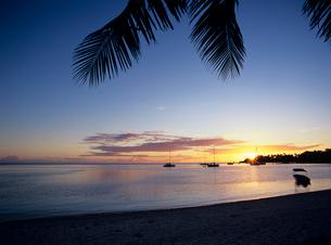夕日とヤシの木とヨットの写真素材 [FYI03886845]