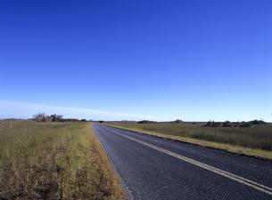 草原の中の道路 フロリダの写真素材 [FYI03886978]