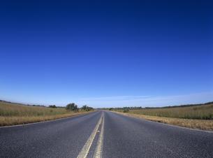草原の中の道路 フロリダの写真素材 [FYI03886979]