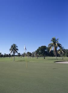 ゴルフ場の写真素材 [FYI03887052]
