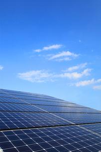 太陽光発電のソーラーパネルの写真素材 [FYI03887408]