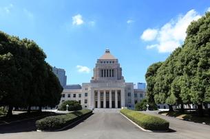 国会議事堂の写真素材 [FYI03887424]