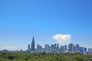 西新宿ビル街 東京都の写真素材 [FYI03887667]