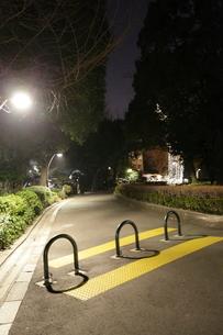 夜の日比谷公園の写真素材 [FYI03887717]