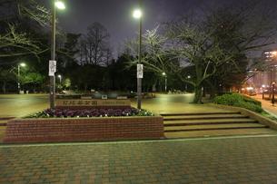 夜の日比谷公園の写真素材 [FYI03887719]