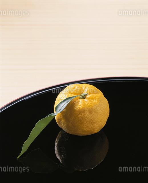 黄柚子の写真素材 [FYI03892101]