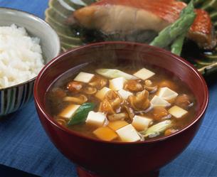 豆腐となめこの味噌汁の写真素材 [FYI03893939]