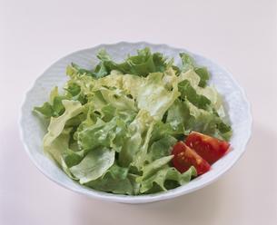 グリーンサラダの写真素材 [FYI03895901]