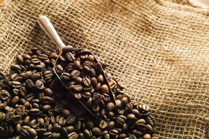コーヒー豆の写真素材 [FYI03897236]