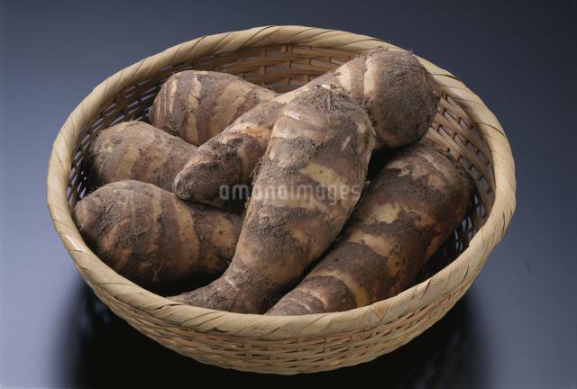 里芋(えび芋)の写真素材 [FYI03904466]