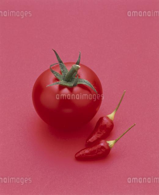 トマト(レッドパール)の写真素材 [FYI03904492]