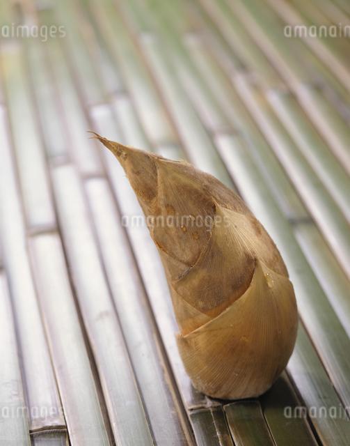 筍の写真素材 [FYI03904682]