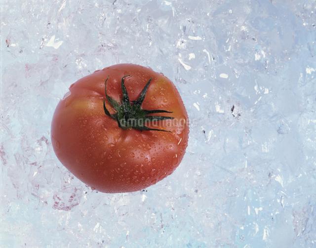 トマトの写真素材 [FYI03904717]