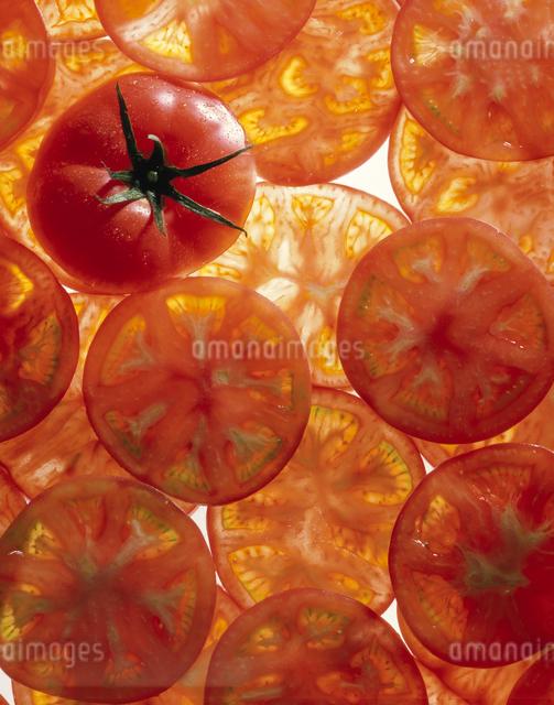 トマトの写真素材 [FYI03904761]