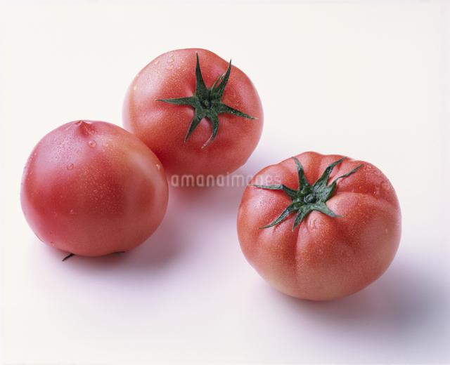 トマトの写真素材 [FYI03904882]