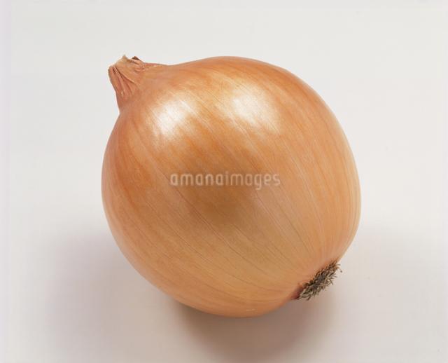 玉ねぎの写真素材 [FYI03904963]