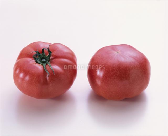 トマトの写真素材 [FYI03904971]