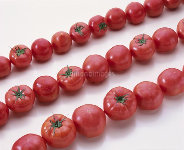 トマトの写真素材 [FYI03904976]
