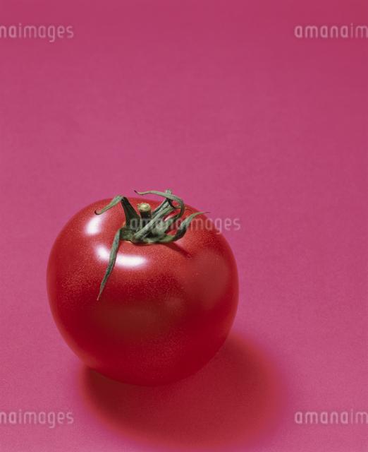 トマト(桃太郎系)の写真素材 [FYI03905208]