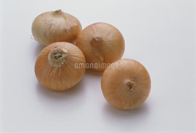 玉ねぎの写真素材 [FYI03905257]
