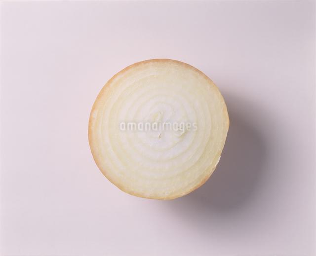 玉ねぎの写真素材 [FYI03905458]