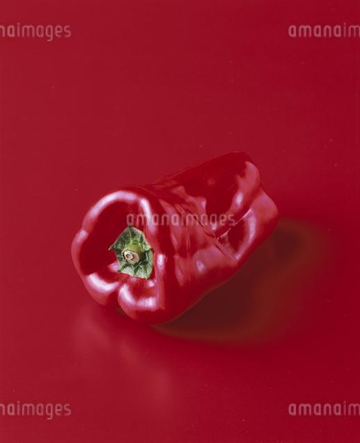 赤ピーマンの写真素材 [FYI03905469]