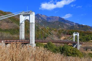 神奈川県立 秦野戸川公園の写真素材 [FYI03906364]