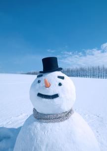 帽子をかぶる雪だるまの写真素材 [FYI03910454]