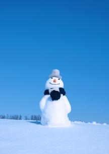 帽子をかぶる雪だるまの写真素材 [FYI03910465]