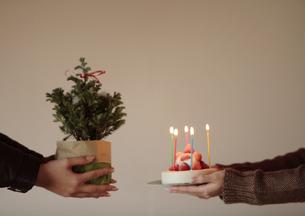 ツリーとケーキを交換し合う2人の写真素材 [FYI03911069]