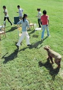 草原で遊ぶ若者たちと犬の写真素材 [FYI03911457]