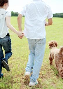 草原で手をつなぎ走るカップルと犬の写真素材 [FYI03911563]